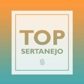 Various Artists - Top Sertanejo (Ao Vivo)  arte