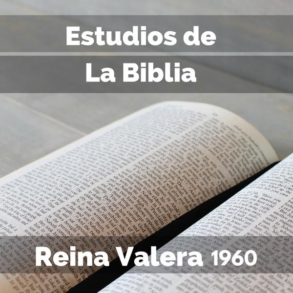.::Predicaciones - Estudios Biblicos - Sermon::. ~