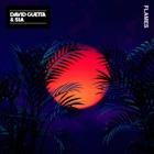 DAVID GUETTA & SIA ***Flames
