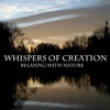 Whispers of Creation
