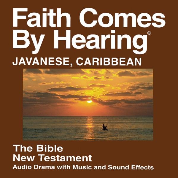 Javaanse Caribische Bijbel - Javanese Caribbean Bible
