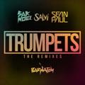 Sak Noel feat. Salvi & Sean Paul Trumpets