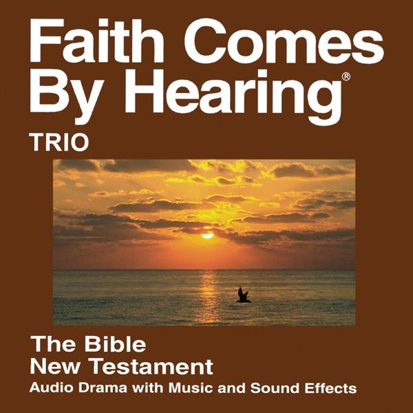 Trio Bijbel - Trio Bible
