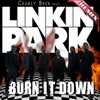 Burn It Down (feat. LINKIN PARK) - Single ジャケット写真