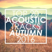 Top 20 Acoustic Tracks Autumn 2016 (Instrumental)