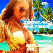 Cumbia Explosion, Vol. 1