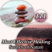 111 Most Effective Healing Sounds of Nature: Songs to Help You Relax, Sleeping Well and Dreaming, Insomnia Cure, Tranquility and Best Relaxing Music for Asian Meditation, Zen Yoga and Spa
