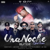 Una Noche Remix (feat. Randy Nota, Lary Over, Guelo Star, Lyan el Palabreal & MC Ceja)