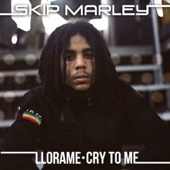 Llora Me (Cry to Me) [Kustom Mike Version]