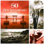50 Zen Serenidad: Música Relajante, Chakra, Tranquilidad, Sonidos de la Naturaleza, Musicapara la Meditación