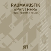 Raumakustik - Panther (Format:B Remix) artwork