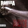 Vulgar Display of Power, Pantera