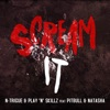 Scream It (feat. Pitbull & Natasha) - EP, N-Trigue & play n skillz