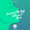 Something About You feat Alius - Spirix mp3
