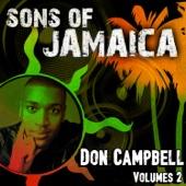 Don Campbell - Rise artwork