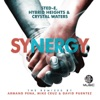 Synergy (The Remixes) - Single ジャケット写真