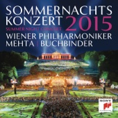 Wiener Philharmoniker - Sommernachtskonzert 2015 (Summer Night Concert 2015)  artwork