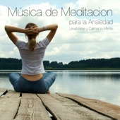 Chakras del Cuerpo Humano - Musica para Meditar