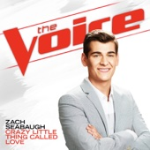 Crazy Little Thing Called Love (The Voice Performance) - Zach Seabaugh