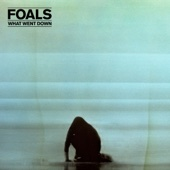 Foals - What Went Down  artwork