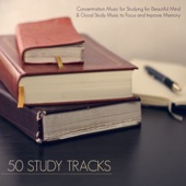 50 Study Tracks - Concentration Music for Studying for Beautiful Mind & Good Study Music to Focus and Improve Memory