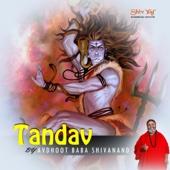ShivYog Chants Tandav