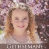 Gethsemane - Single, Reese Oliveira