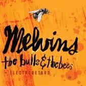Melvins - Youth of America artwork