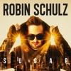 Robin Schulz & Disciples