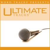 Because of Who You Are (As Made Popular By Vicki Yohe) [Performance Track]