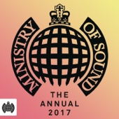 Various Artists - Ministry of Sound: The Annual 2017 artwork