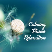 Calming Piano Relaxation: Meditation Collection, Healing Sound for Your Soul, Mind & Body, Yoga & Sleep