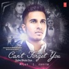 Can't Forget You (Tujhe Bhula Diya)