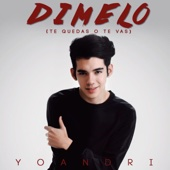 [Download] Dimelo (Te Quedas O Te Vas) MP3