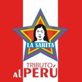 Medley Chacalonero: El Cartero / Amargo Amor / Viento