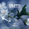 Ain't Nothing Hurting - Single, Calippo