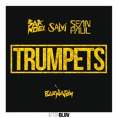 bajar descargar mp3 Trumpets (feat. Sean Paul) [Radio Mix] - Sak Noel & Salvi