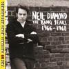The Bang Years 1966-1968 (23 Original Mono Recordings)