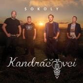 Sokoly - Kandráčovci