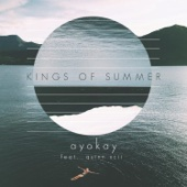 Kings of Summer (feat. Quinn XCII) - ayokay Cover Art