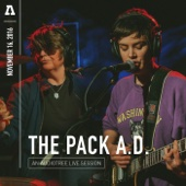 The Pack a.d. on Audiotree Live