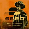 What Do You Love feat Jacob Banks Single