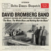 The Blues, The Whole Blues and Nothing but the Blues - The David Bromberg Band Cover Art