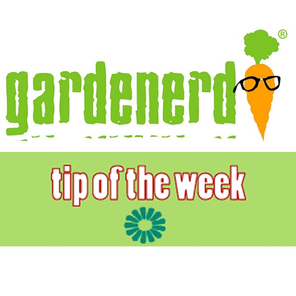 Gardenerd Tip of the Week