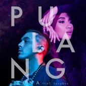 Pulang (feat. SonaOne)