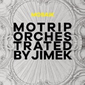 Mosaik (MoTrip Orchestrated by Jimek / Live)