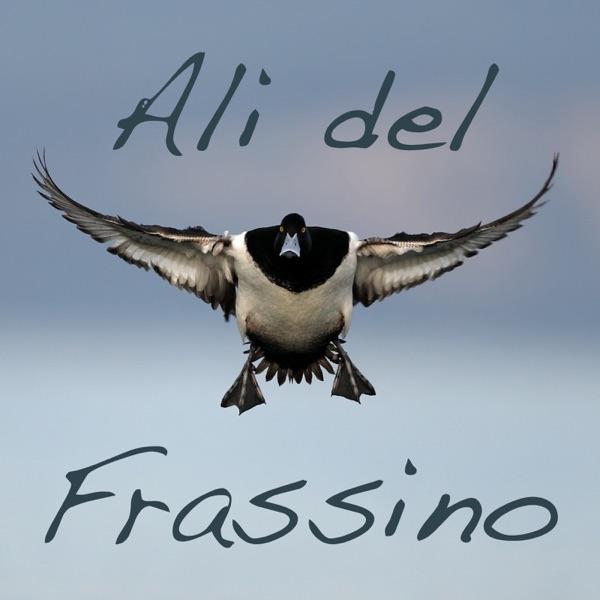 VR BW: Ali del Frassino