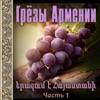 Грёзы Армении 1, Super Sako