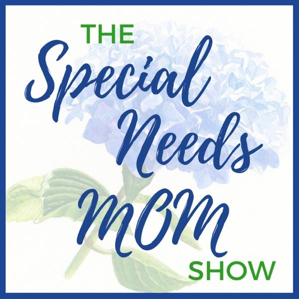 The Special Needs Mom Show