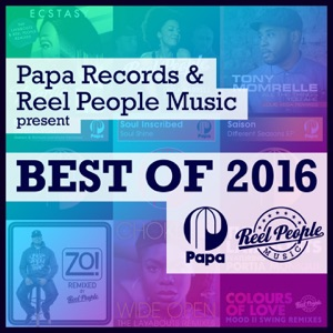 Papa Records & Reel People Music Present Best of 2016 - Various Artists